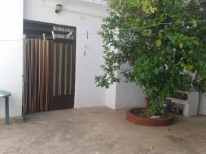 REF063-patio